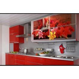 Кухня с фотопечатью на фасадах МДК-67 Киев, Суммы, Прилуки, Львов, , Черновцы, Фастов, Бровары