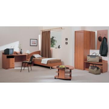 Мебель в Гостиницу МПГ-1 Кровати и вешалки, столики и трюмо для отелей и пансионатов под заказ